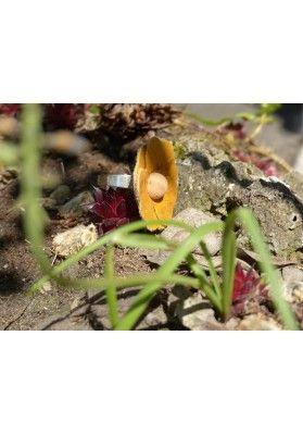 Blumen Kork Ring - Schmuck